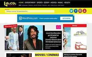 Turnkey Celeb News 100 Automated Wordpress Website Celebrity Gossip News Blog
