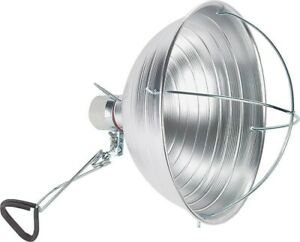 Lamp Brooder 10 5in 300w 6ft no Pz 302pdq8 Powerzone