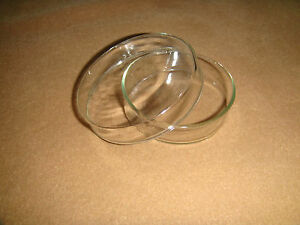 Glass Tissue Petri Dish 60mm culture Dish Culture Plate With Cover 10pcs lot