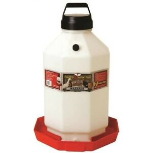 Miller Manufacturing Ppf7 7 gallon Plastic Poultry Waterer Red
