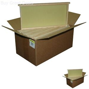 Assembled Bee Hive Frame Waxed Natural Foundation Honey Box Beekeeping Supplies
