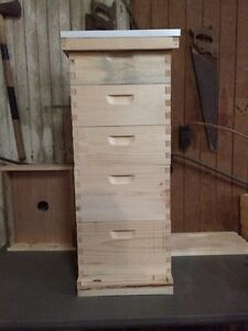 Complete 10 Frame Bee Hive