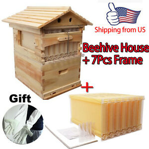 7pcs Auto Honey Bee Hive Beekeeping Frame Kit Beehive Wooden Box House Us Ship