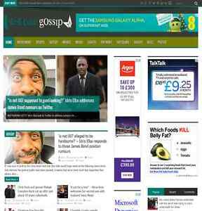 100 Fully Automated Fantastic News Site A Wordpress Website Money Maker