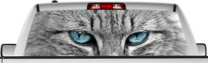 Rear Window Graphic View Thru Decal Sticker Cat Eyes Pickup Truck Suv Vans