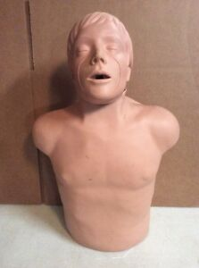 Simulaids Brad Junior Cpr Manikin Torso Nursing Emt Training