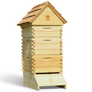 Log Cabin Bee Hive 10 Frame Langstroth with Frames Foundations