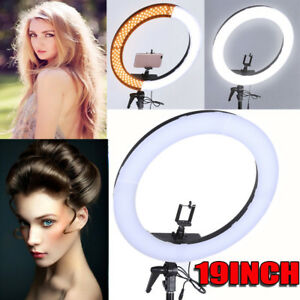 19 Smd Led Ring Light Dimmable 5500k Continuous Lighting Photo Video Kit
