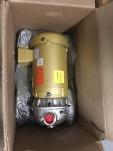 Goulds 2st1j9g4 Npe Series End Suction 316l Stainless Centrifugal Water Pump