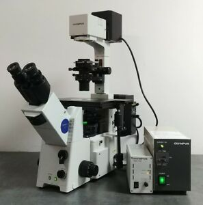 Olympus Microscope Ix71 With Fluorescence And Dic
