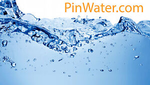 Pinwater com Premium Water Related Domain Name Website water Filter Systems