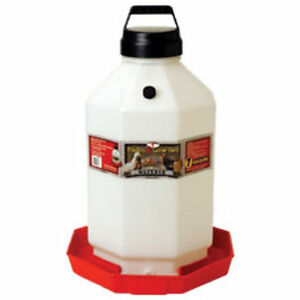 Poultry Game Bird 7 Gallon Waterer Chicken Easy Carry