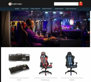 Custom Gaming Shopify Dropshipping Store Website Ready In 1 3 Days