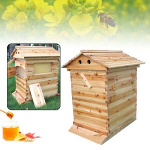 Auto Bee Hive Flow Honey Frame Beekeeping Wooden House Box Brood Upgraded