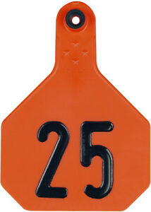 Y tex 4 Star Large Cattle Ear Tags Orange Numbered 51 75