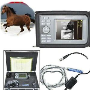 Veterinary Digital Ultrasound Scanner Large Animal Rectal Probe Horses Cows Farm