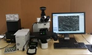 Olympus Microscope Bx61 Fluorescence With Apos And Motorized Stage
