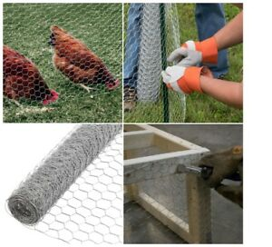 Hexagonal Chicken Wire Mesh Poultry Netting Fence Chicken Fencing 150 Foot 2