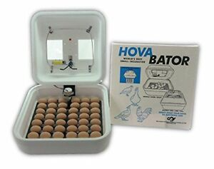 Electric Egg Incubator Hatching Hatch Chicken Bird Poultry Thermal Heat Air Flow
