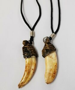 Pendant Tiger Talisman Pig Tooth Magic Fang Lucky Protection Takrud Thai Amulet