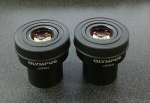 Olympus Microscope Wh15x 14 Eyepieces