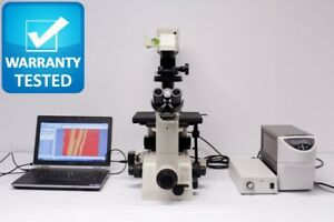 Nikon Diaphot 300 Inverted Fluorescence Microscope