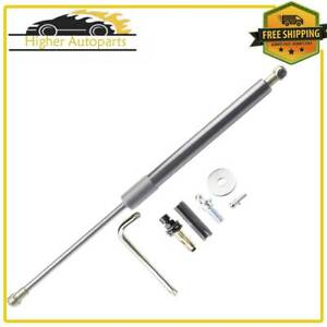 Tailgate Assist Lift Supports Shock Strut For Dodge Ram 1500 2500 3500 2002 2008