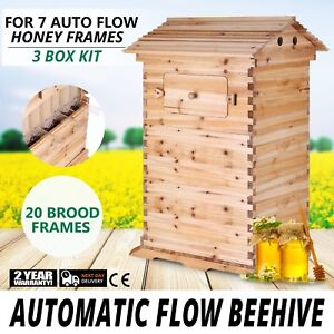 Bee Hive 3 Layers For 7 Auto Flow Honey Frame Wooden Beehive 20 Broads Frames