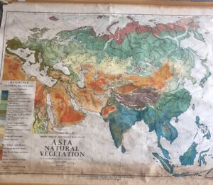 Vintage Pull Down Map 1 Layer Asia Vegetation Vintage Salvage Old Antique
