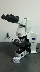 Olympus Microscope Bx41 With 2x And Tilting Telescope Head