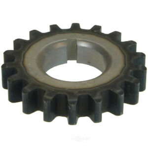 Engine Timing Crankshaft Sprocket Fits 1965 1966 Studebaker Commander Cruiser Da