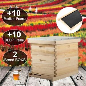 Beehive Complete Box Kit 10 Deep10 Medium Langstroth Beekeeping W queen Excluder