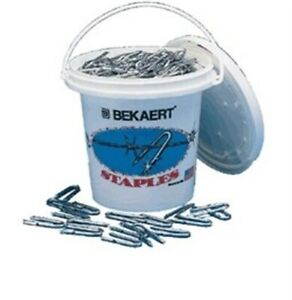 Staple 1 1 4 Za Barb 8 Pl By Bekaert Steel Wire Corp