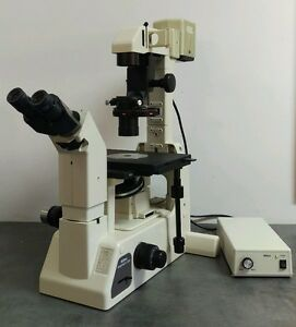 Nikon Microscope Diaphot 200 Phase Contrast With Camera Adapter