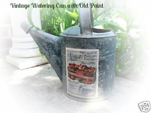 Antique Vtg Garden Watering Can With Old Blue Paint Cart Of Peaches Label