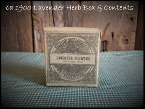 Antique Lavender Flowers Apothecary Pharmacy Doctor S Medicinal Herb Box Ca 1900