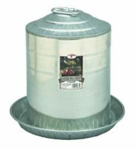 Poultry Fountain Game Bird Turkey Chicken 5 Gallon Double Wall Metal