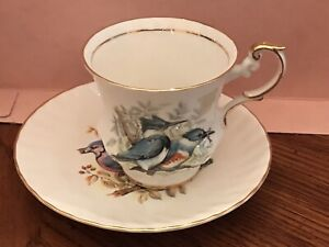 Queen S Rosina Birds Of America Series Tea Cup And Saucer Set