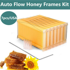 7pcs Automatic Raw Frame Honey Beekeeping Beehive Hive Frames Kit Food grade Hot