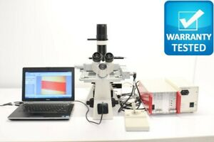 Zeiss Axiovert 40 Cfl Inverted Microscope Fluorescence Phase Contrast
