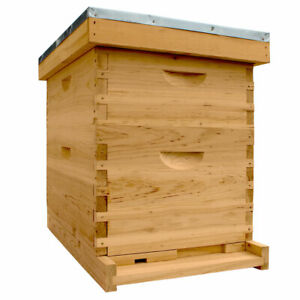 Starter Bee Hive 1 Deep Brood Box And 1 Medium Super Box With Frame foundations