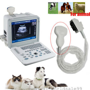 Veterinary Ultrasound Scanner Machine Unit 3 5mhz Convex Transducer 3d Aminal A