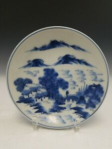 Antique Chinese Blue And White Porcelain Dish Kangxi