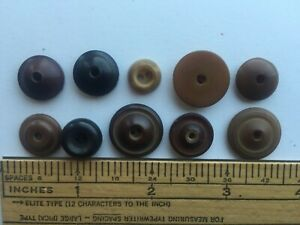 10 Vegetable Ivory Tagua Nut Whistle Buttons