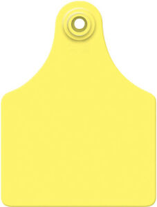 Allflex Global Maxi Blank Cattle Ear Tags 25 Count Yellow