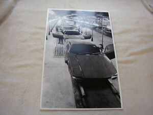Ford Pantera Assembly Line 11 X 17 Photo Picture