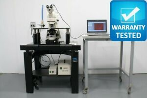 Zeiss Axioskop 2 Fs Fluorescence Phase Contrast Microscope W Tmc Antivibration