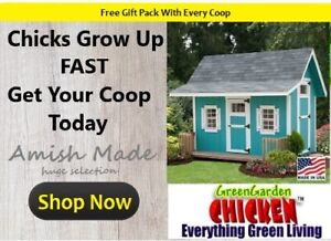 Large Chicken Coop For 30 Birds Limited Edition