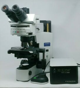Olympus Microscope Bx41 With Fluorescence Phase Contrast And X cite Led Light