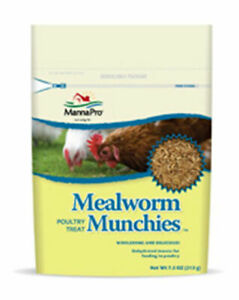 Mannapro Mealworm Munchies 100 Dried Poultry Treat Insect Snack Bugs 7 5 Oz